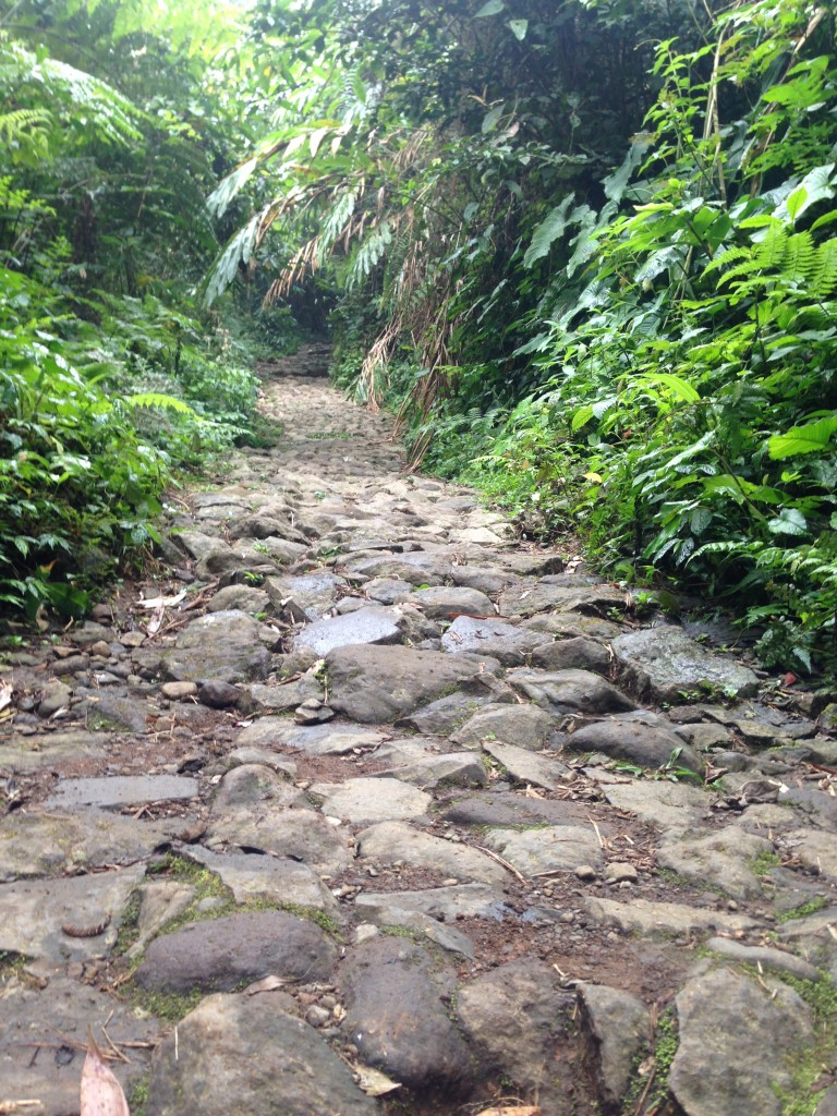 Track menuju curug sawer (2)