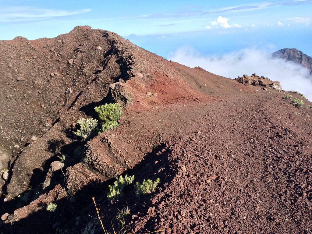 Medan Pendakian menuju Summit