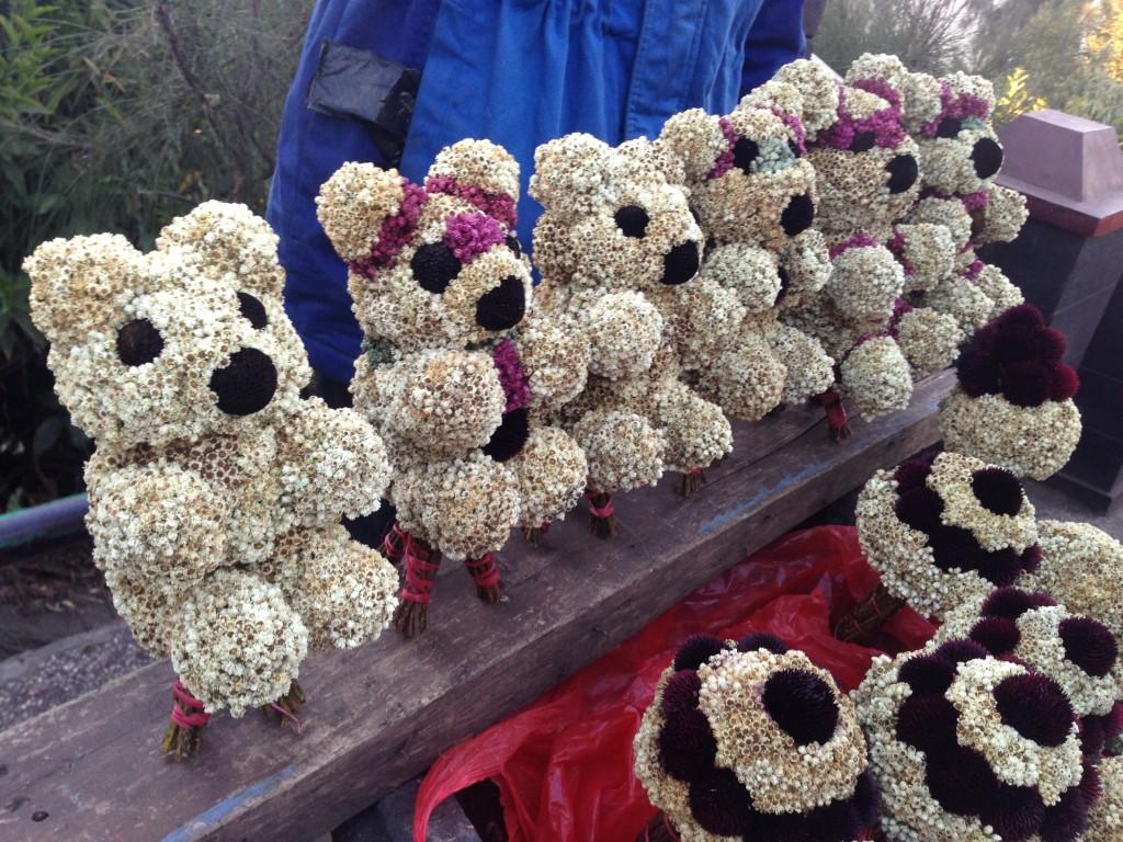 edelweis yang dibentuk menyerupai boneka beruang. cute!