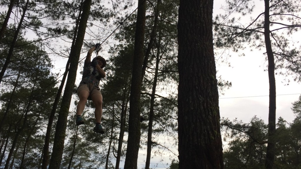 end of my adventure at treetop
