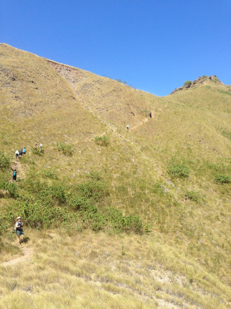 Medan Pendakian Pulau Padar