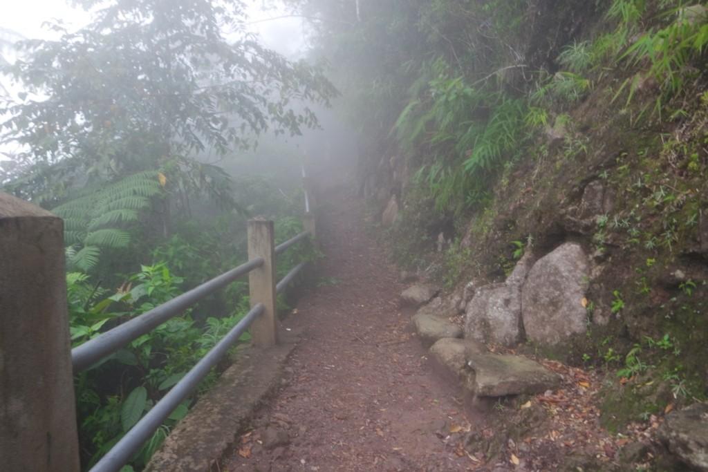 Pos 2 trekking