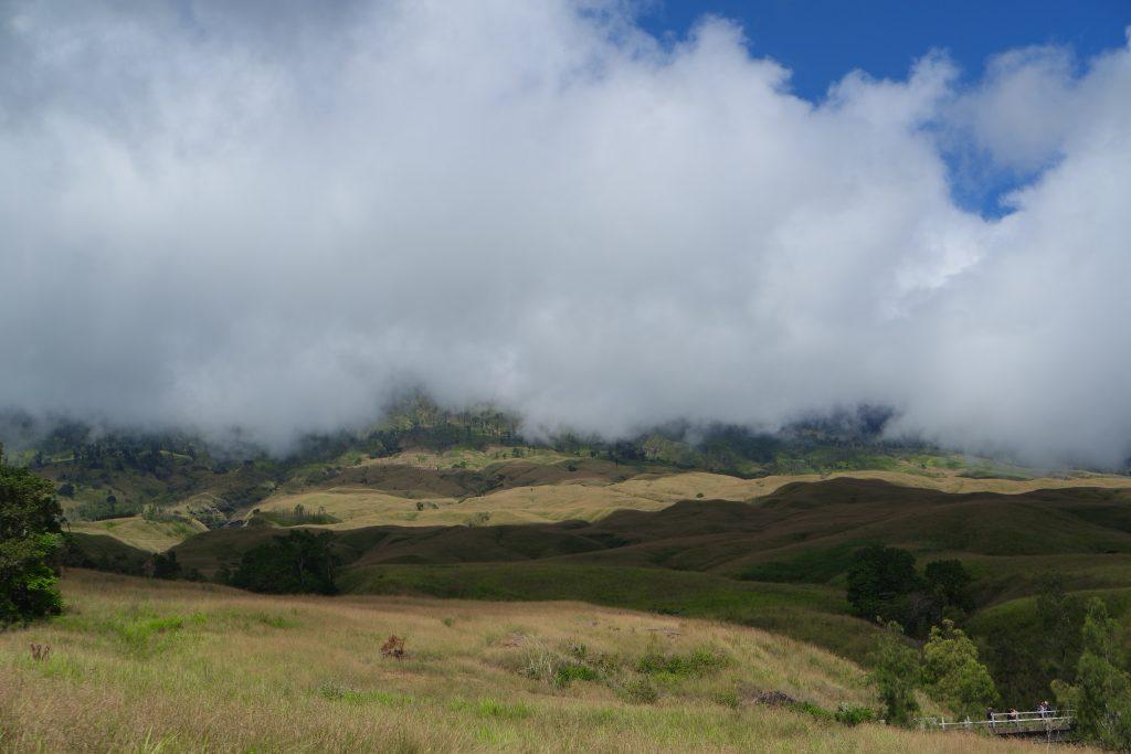 Sabana saat trekking menuju Pos 1 Sembalun