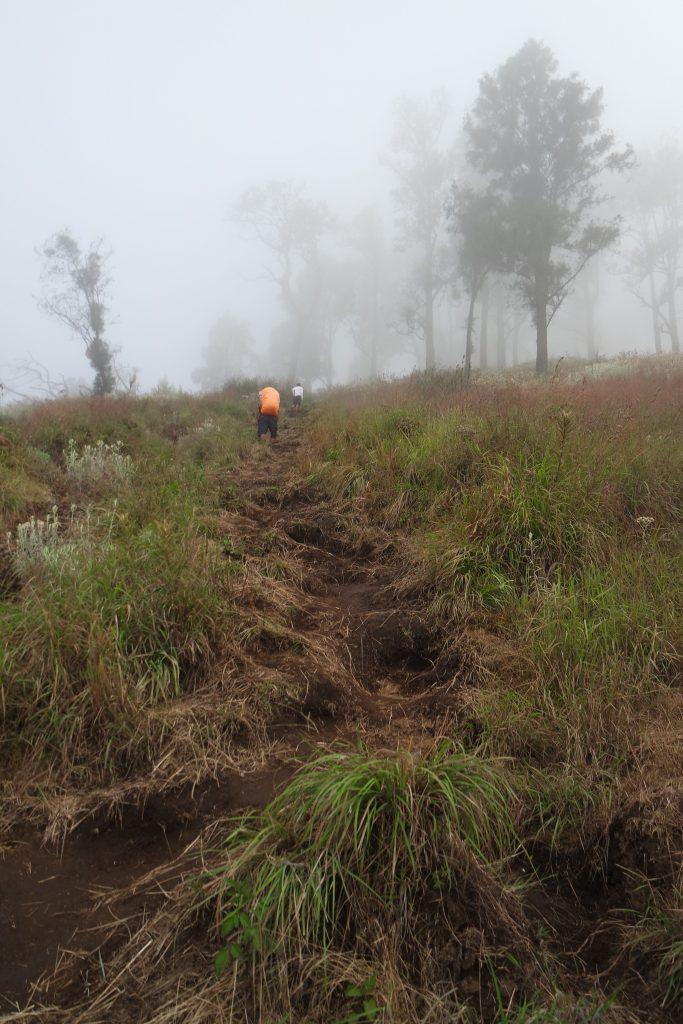 Medan Pendakian Pos 3 menuju Plawangan Sembalun